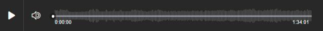 Audio Entrevista